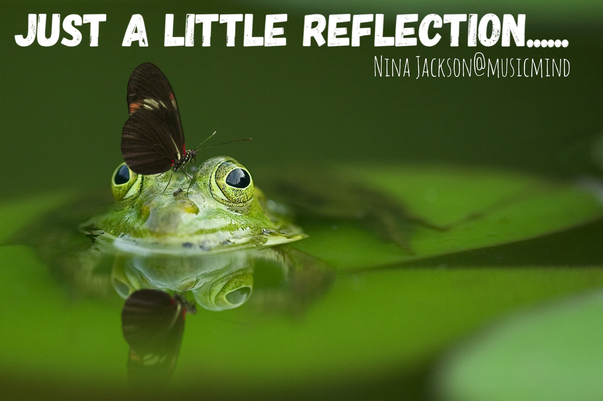 Just a little reflection….